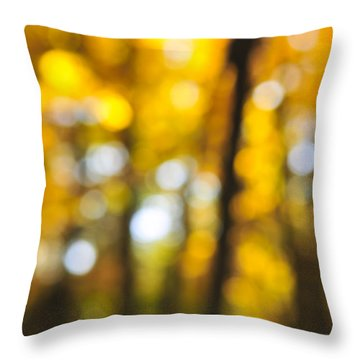 Fall Abstract Throw Pillow by Elena Elisseeva