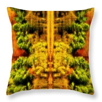Throw Pillow featuring the photograph Fall Abstract by Meirion Matthias