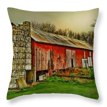 Throw Pillow featuring the photograph Fall Barn by Mary Timman