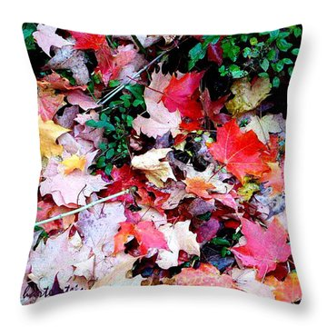 Throw Pillow featuring the photograph Fall Beauty by Joan Hartenstein
