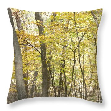 Throw Pillow featuring the photograph Fall Beginning  by Yumi Johnson