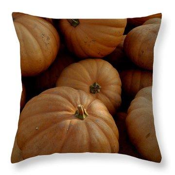Fall Bounty Throw Pillow by LeeAnn McLaneGoetz McLaneGoetzStudioLLCcom
