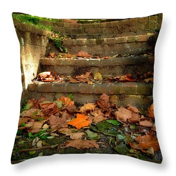 Throw Pillow featuring the photograph Fall by Brian Hughes