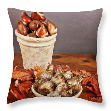Throw Pillow featuring the photograph Fall Bulbs 1 by Verena Matthew