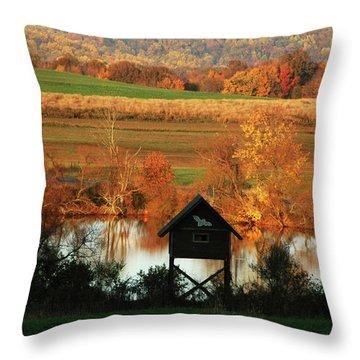 Fall Colors 1 Throw Pillow by Vilas Malankar