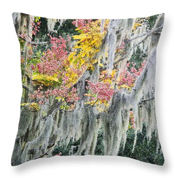 Fall Colors In Spanish Moss Throw Pillow by Carolyn Marshall