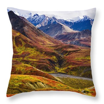 Fall Colours And Alaska Range, Denali Throw Pillow by Yves Marcoux