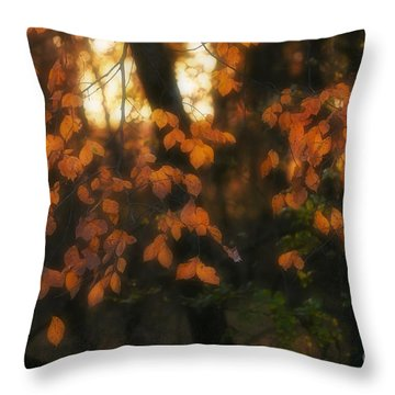 Throw Pillow featuring the photograph Fall Colours by Art Whitton