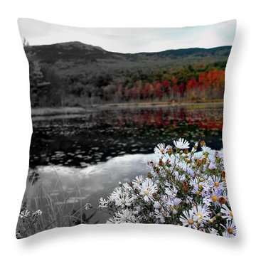 Fall Creeps In Throw Pillow by Rick  Blood