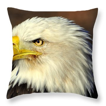 Fall Eagle 6 Throw Pillow by Marty Koch