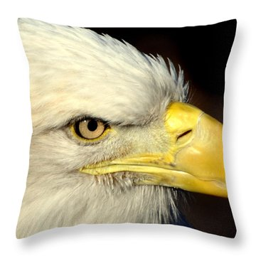 Fall Eagle  Throw Pillow by Marty Koch