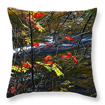 Fall Forest And River Throw Pillow by Elena Elisseeva