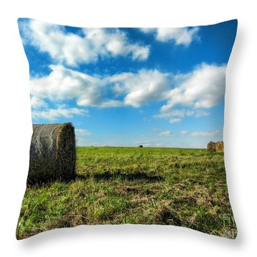 Fall Harvest Throw Pillow by Mariola Bitner