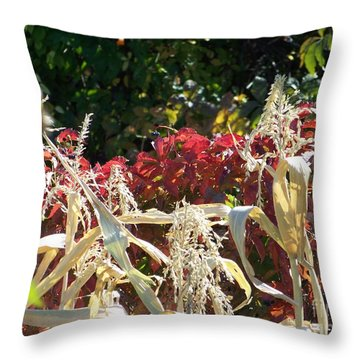 Fall Harvest Of Color Throw Pillow by Dorrene BrownButterfield