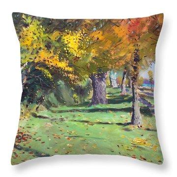 Fall In Goat Island Throw Pillow by Ylli Haruni