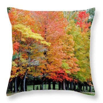 Fall In Michigan Throw Pillow by Optical Playground By MP Ray