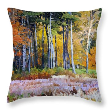 Fall In The Arboretum Throw Pillow