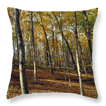 Fall In The Forest 1 Throw Pillow by Marty Koch