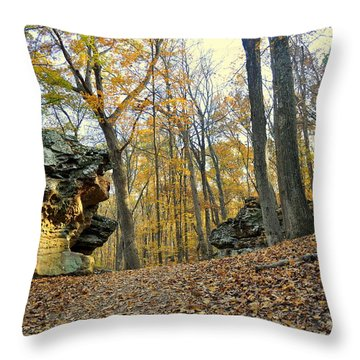 Fall In The Forest 3 Throw Pillow by Marty Koch