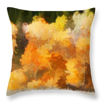 Fall In The Sierra IIi Throw Pillow