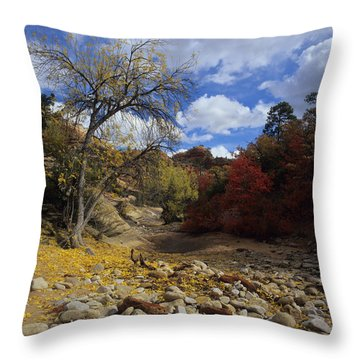 Fall In Zion High Country Throw Pillow