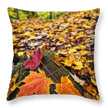 Fall Leaves In Forest Throw Pillow by Elena Elisseeva