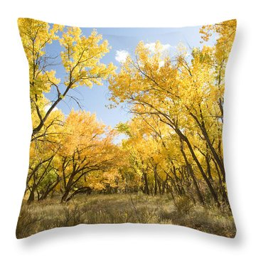 Fall Leaves In New Mexico Throw Pillow