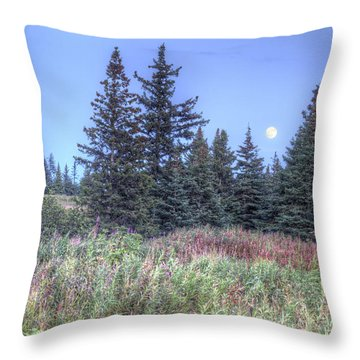 Throw Pillow featuring the photograph Fall Moon by Michele Cornelius