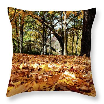 Throw Pillow featuring the photograph Fall On The Ground by Rachel Cohen