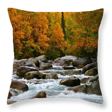 Fall On The Little Susitna River Throw Pillow