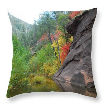 Fall Peeks From Behind The Rocks Throw Pillow by Heather Kirk
