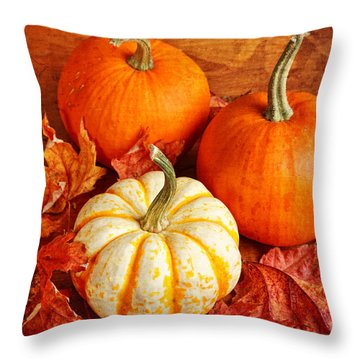 Throw Pillow featuring the photograph Fall Pumpkins And Decorative Squash by Verena Matthew