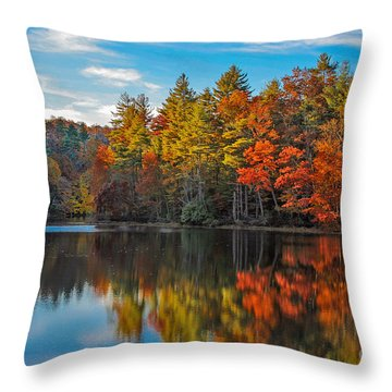 Fall Reflection Throw Pillow by Ronald Lutz