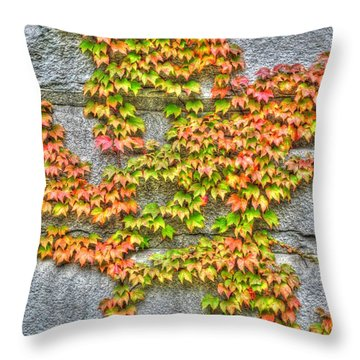 Throw Pillow featuring the photograph Fall Wall by Michael Frank Jr