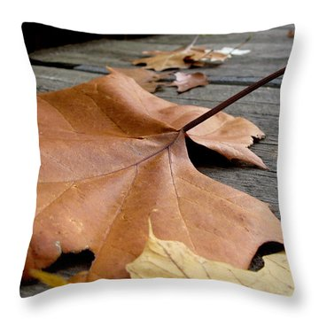 Fallen Leaf Throw Pillow by Jack Schultz