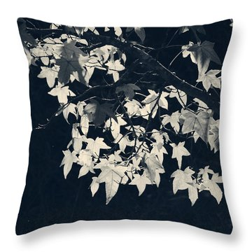Falling Stars Throw Pillow by Laurie Search