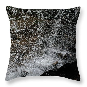 Fall's Backside Throw Pillow by Susan Herber