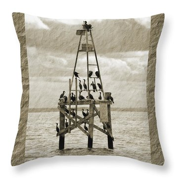 Throw Pillow featuring the photograph Family Reunion by Donna Proctor