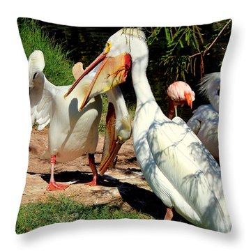 Throw Pillow featuring the photograph Family Squabble by Jo Sheehan