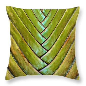 Fan Lines Throw Pillow