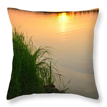 Farewell To The June Day Throw Pillow