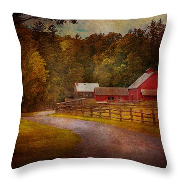 Farm - Barn - Rural Journeys  Throw Pillow by Mike Savad