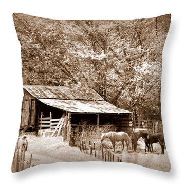 Farm And Barn Throw Pillow by Marty Koch