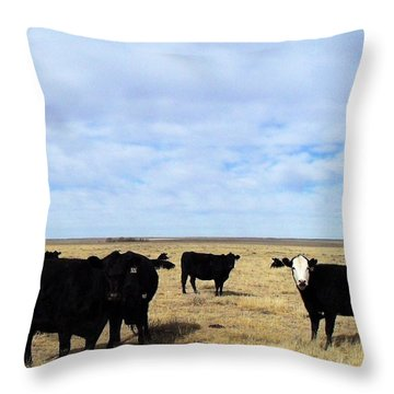 Throw Pillow featuring the photograph Farm Friends by Clarice  Lakota