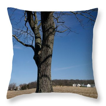 Throw Pillow featuring the photograph Farmland Versus Development by Karen Lee Ensley