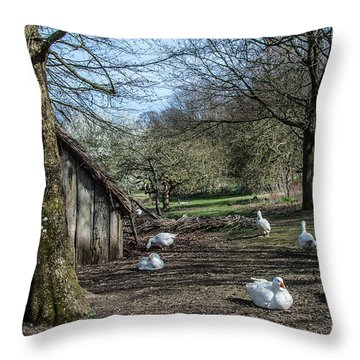 Farmyard Geese Throw Pillow by Dawn OConnor