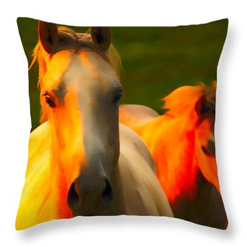 Father And Son Throw Pillow by Randall Branham