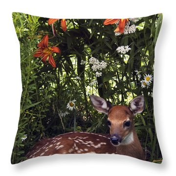 Fawn - D001104 Throw Pillow