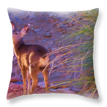 Fawn In Last Light Throw Pillow by FeVa  Fotos
