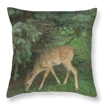 Fawn Throw Pillow by Leslie Manley